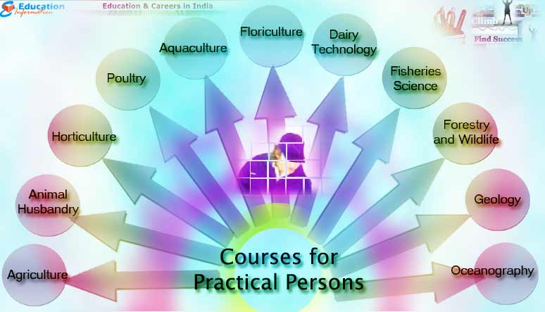Courses that are best suited for Practical Persons